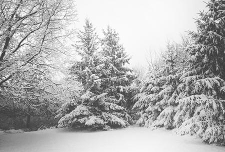 Bei Schneefall und Eis besteht eine gesetzliche Räum- und Streupflicht für Haus- und Grundstücksbesitzer