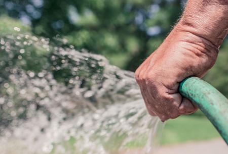 Pflege und Bewässerung von Gärten; (c) Ryan McGuire